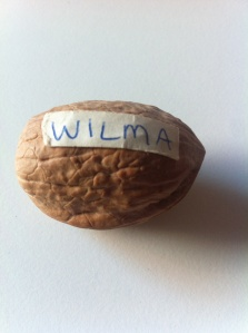 Walnut named Wilma